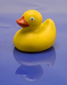 Free Rubber Duck Royalty Free Stock Photography - 7734997
