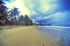 Free Beautiful Beach Stock Photo - 7735550