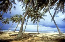 Free Beautiful Beach Stock Photography - 7735612