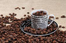 Free Coffee Beans Stock Photos - 7736543
