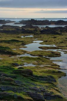 Free Beach Rocky Stock Image - 7737431