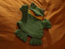 Free Plush Frog Stock Photography - 7737602