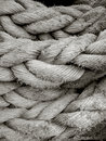 Free Black & White Full Frame Rope Royalty Free Stock Images - 7744639
