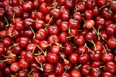Free Cluster Of Fresh Cherries Royalty Free Stock Photography - 7740917