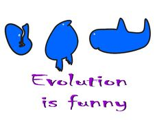 Evolution Is Funny Stock Photography