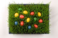 Free Easter Eggs Royalty Free Stock Photos - 7745178