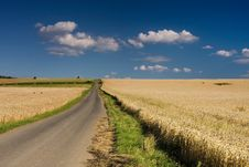 Free Rural Scene On Summer Day Royalty Free Stock Photography - 7745267