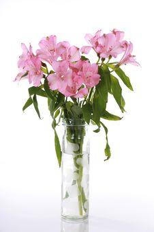Free Vase Of Pink Lilies Stock Image - 7746411