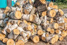 Free Chopped Birch Logs Stock Image - 77446211