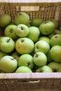 Free Green Apple Fruit Stock Photography - 7751062
