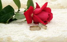 Free Wedding Rings And Rose Stock Image - 7750291