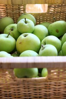 Free Green Apple Fruit Stock Photo - 7751060