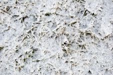 Free Snow And Ice Stock Image - 7751181