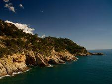 Free Sea Shore Royalty Free Stock Image - 7751496