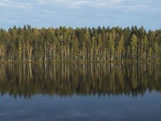 Free Forest Lake Stock Photo - 7751990