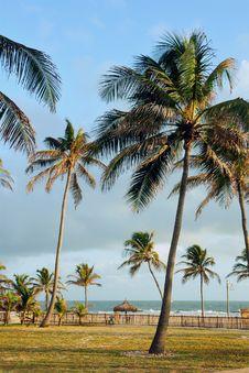 Garden Beach Resort Stock Images
