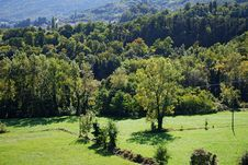 Free October Green Landscape Royalty Free Stock Photos - 7757038