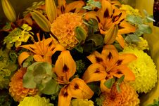 Free Bright Orange And Yellow Flowers Royalty Free Stock Images - 7757249