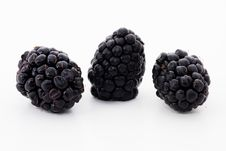 Free Ripe Blackberries Royalty Free Stock Images - 7757629