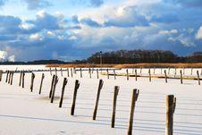 Free Frozen Harbor Stock Photography - 7758612