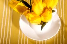 Free Yellow Still Life Royalty Free Stock Photography - 7758797