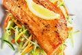 Free Fillet Of Salmon Royalty Free Stock Photos - 7769768