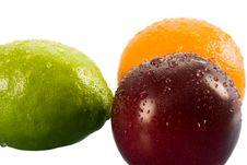 Orange, Lemon, Apple And Plum
