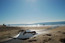 Free Corona Del Mar 3 Royalty Free Stock Images - 7760139
