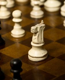 Worn Knight On A Chess Board Stock Photos