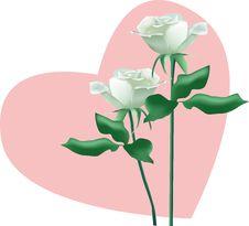 Free Rose Love Stock Image - 7763421
