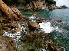 Free Sea Shore Royalty Free Stock Photography - 7763767