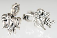 Free Silver Earring Stock Images - 7766534