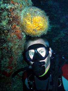 Free Orange Ball Sponge And Diver Stock Image - 7768961