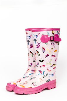 Free Ladies  Wellington Boots Stock Photography - 7769482