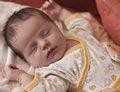 Free Newborn Baby Sleeping Royalty Free Stock Images - 7770809