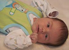 Free Newborn Baby Resting Royalty Free Stock Photos - 7770698