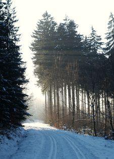 Cross-country Skiing Snowtrack Stock Photos