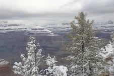 Free Grand Canyon In Winter 5 Royalty Free Stock Photography - 7770837
