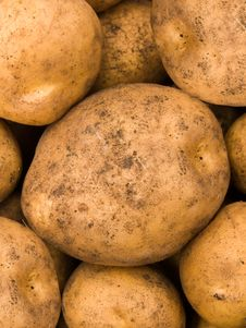 Free Potato An Abstract Background Royalty Free Stock Image - 7771566
