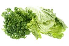 Free Greens Stock Photos - 7771653