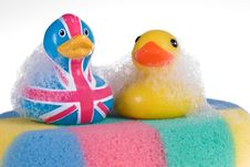 Free Rubber Duck Royalty Free Stock Photos - 7772918