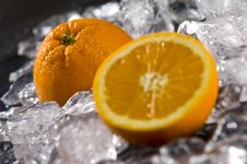 Free Orange Stock Images - 7773024