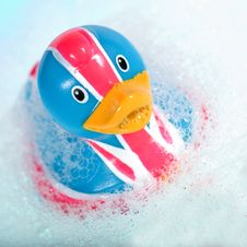 Free Rubber Duck Royalty Free Stock Photos - 7773038