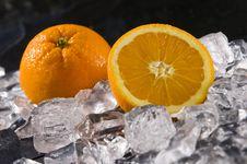 Free Orange Stock Photography - 7773042
