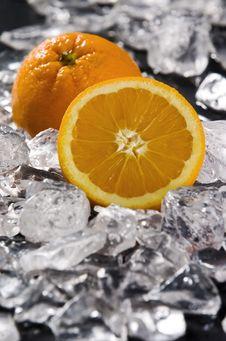 Free Orange Stock Photography - 7773052