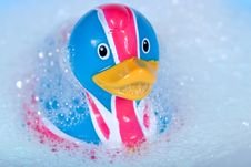 Free Rubber Duck Stock Photos - 7773193