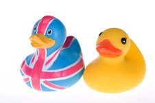 Free Rubber Duck Royalty Free Stock Images - 7773269