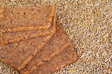 Free Wholegrain Bread And Rye Grains Royalty Free Stock Photos - 7773848