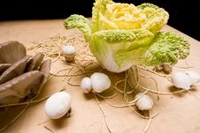 Free Cabbage And Mushroom Stock Photo - 7777940