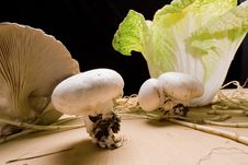 Free Cabbage And Mushroom 3 Royalty Free Stock Photography - 7778027